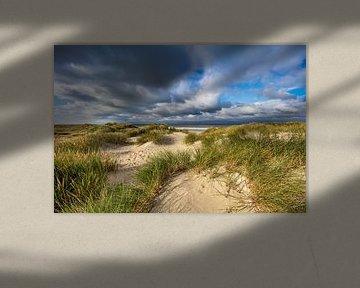Duinen op het eiland Vlieland van Frans Lemmens