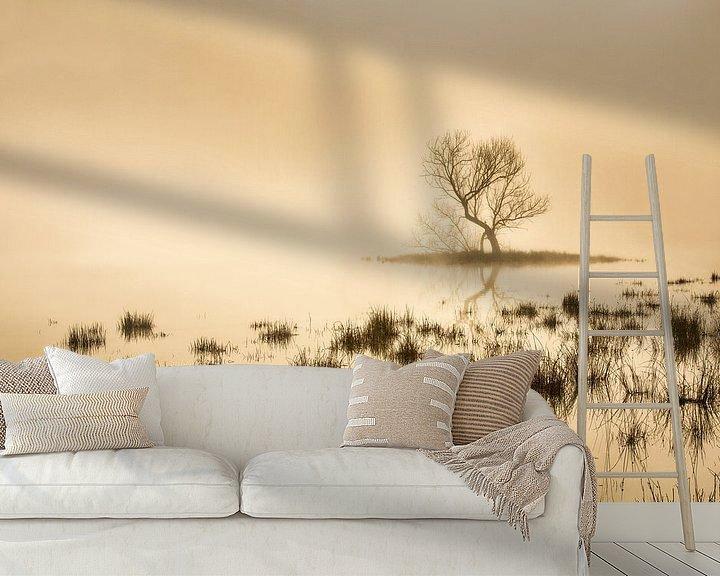 Beispiel fototapete: Torfmoor bei Morgennebel von Frans Lemmens