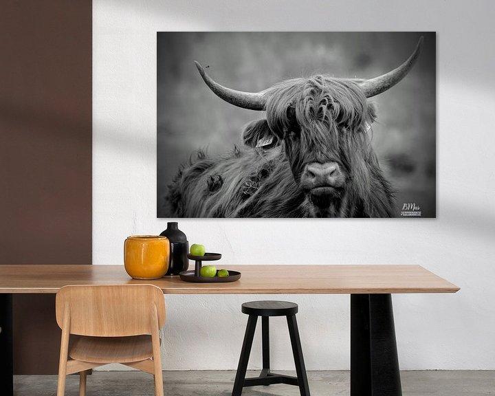 Sfeerimpressie: Schotse hoorns van Bart van Mastrigt