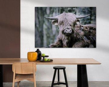 Lazy cow van Bart van Mastrigt