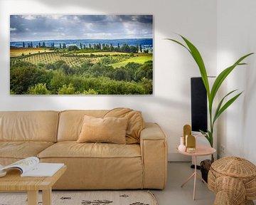 Nederlands Toscane van Judith Reinders-Peters