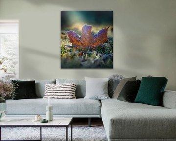 Herfstblad rijp van Willian Goedhart