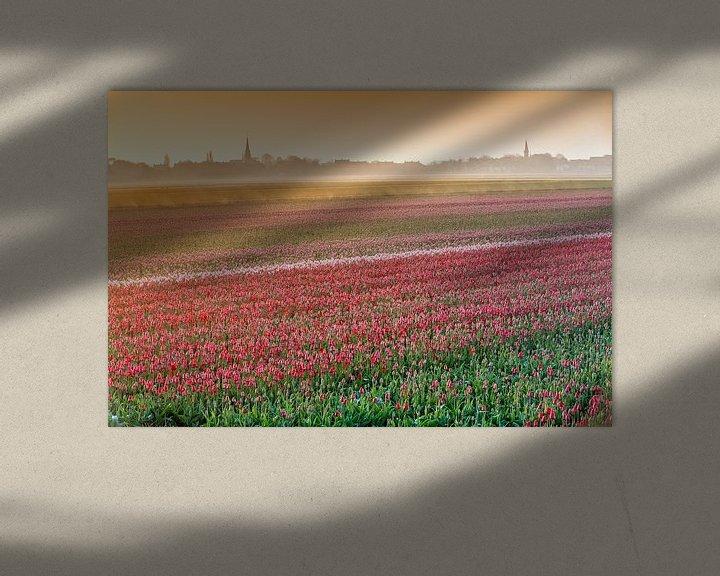 Impression: Champs de tulipes en fleurs dans la brume du matin sur Frans Lemmens