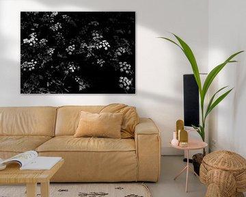 Blumen von Iritxu Photography