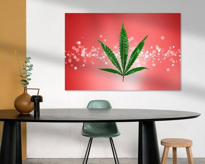 Beispiel: Cannabis von Tilo Grellmann   Photography