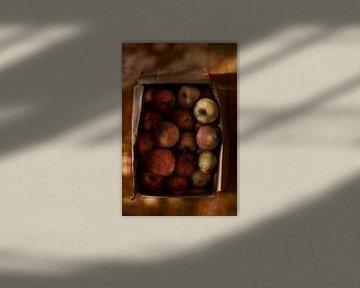 Appels van johan vanbecelaere