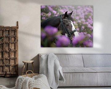 Paardenportret in bloemen van Jack Soffers