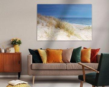Dune au bord de la mer