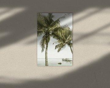 FLORIDA KEYS Lieu fantastique | Vintage sur Melanie Viola