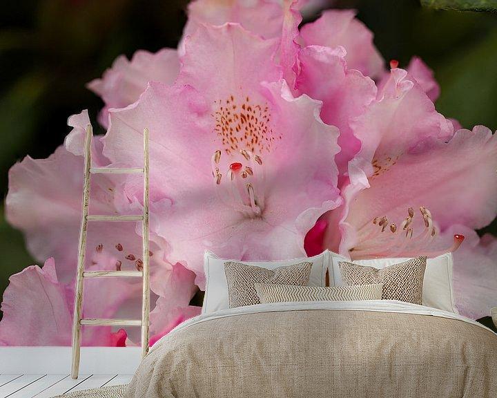 Sfeerimpressie behang: Rhododendronbloesem van Erich Werner