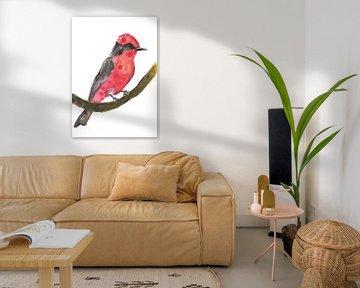 Rode Kardinaal - Kunst Print van een bijzondere vogel illustratie van Angela Peters