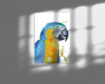 Blauwe Ara - Kunst Print van een bijzondere tropische vogel illustratie van Angela Peters