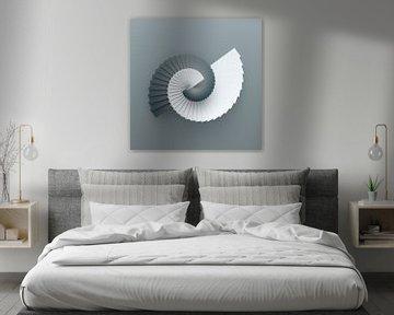 Zaagslak blauw-grijs van Jörg Hausmann
