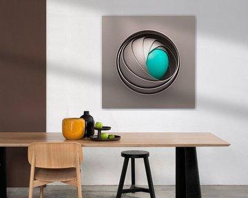 Kogelomhulsels bruin-turquoise van Jörg Hausmann