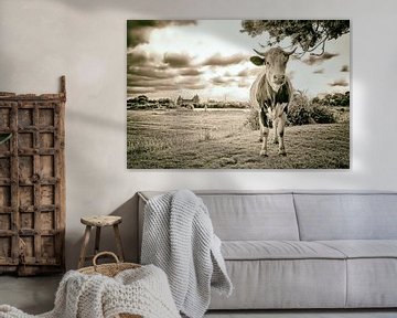 Koe en Muiderslot van Peter Bongers