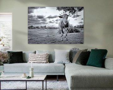 Kuh und Muiderslot von Peter Bongers
