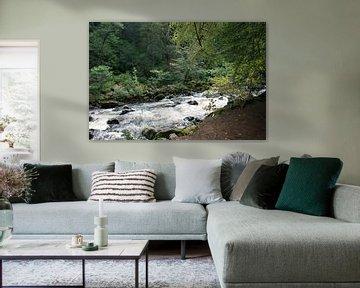 The Hermitage, Dunkeld, Schotland 2 van Floortje Mink