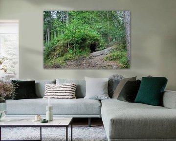 Versteck im Wald von Floortje Mink