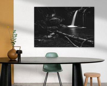 Minimalistischer Wasserfall hinter zerbrochenem Baum in Schwarz-Weiß von Patrik Lovrin