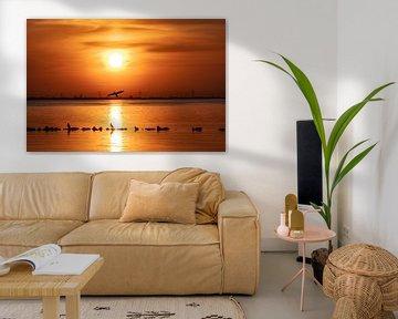 Sonnenuntergang mit Kormoranen über dem Gooimeer-See von Larisa Landré
