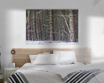 Bomen in de sneeuw van Merijn Loch