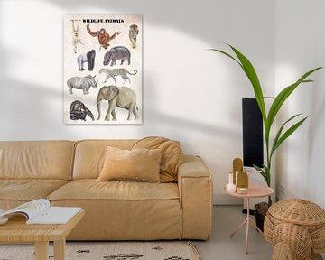 Wildtiere von Jasper de Ruiter