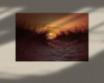 Coucher de soleil dans les dunes sur Florian Kunde
