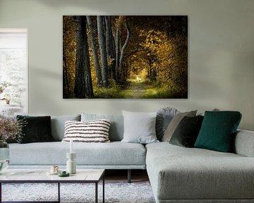 Green to Gold van Kees van Dongen