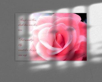 Een roos van mij. van Geert-Jan Timmermans