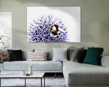 Blume und Biene von Stephanie Verbeure