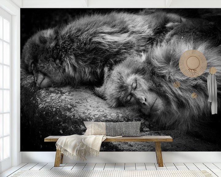 Beispiel fototapete: Schlafen, Akihiro Shibata von 1x