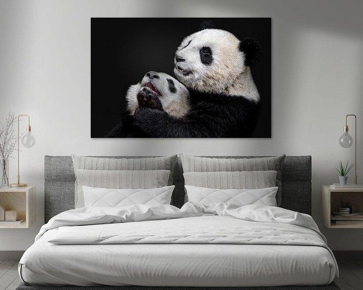 Beispiel: Pandas, Alessandro Catta von 1x
