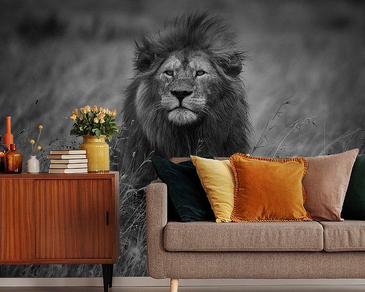 Beispiel fototapete: König der Löwen, Mohammed Alnaser von 1x