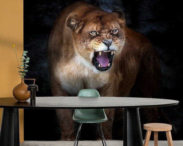 Beispiel fototapete: Lion Portrait, Santiago Pascual Buye von 1x