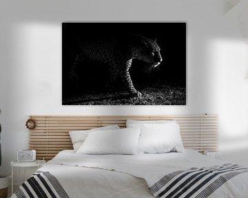 Leopard Nacht Jagd, Hannes Bertsch von 1x