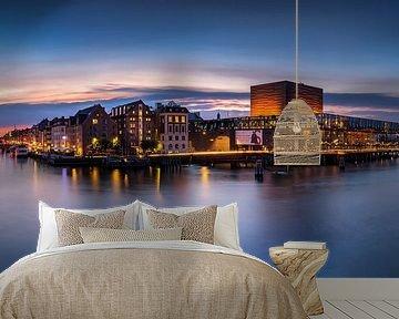 Panorama Kopenhagen van Adelheid Smitt