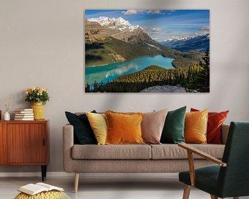 Peyto Lake, Canada van Adelheid Smitt