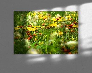 Field of flowers van Ruud van Ravenswaaij