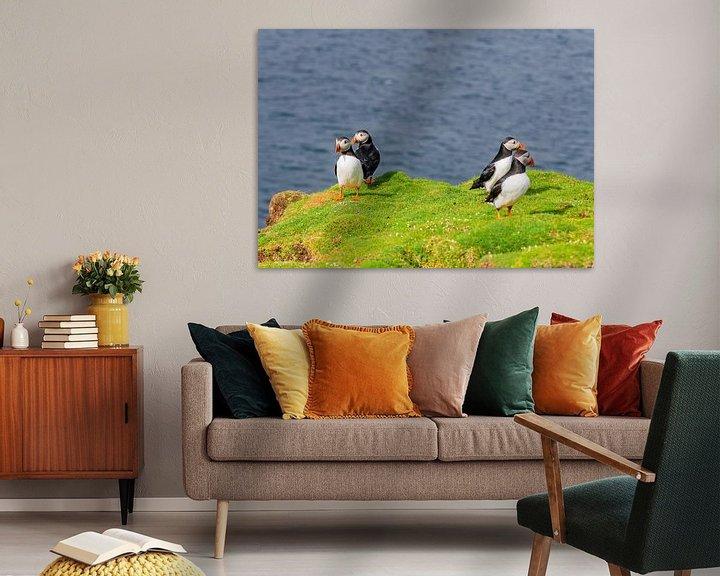 Beispiel: Papageitaucher von Merijn Loch