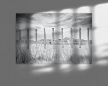 Dünen und Strand, Zandvoort von Wendy Tellier - Vastenhouw
