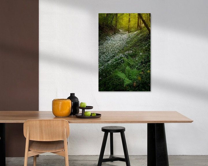 Beispiel: Felder voller Bärlauch in den schönen Wäldern Südlimburgs von Jos Pannekoek