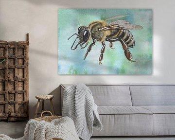 Honigbiene von Jasper de Ruiter