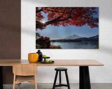 Het Kawaguchi meer in de herfst met de Fuji vulkaan in de achtergrond van Anges van der Logt