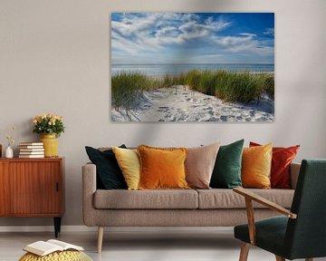 Baltische Zee Duinen van Claudia Moeckel