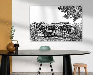 Koeien in de wei van Ans Bastiaanssen