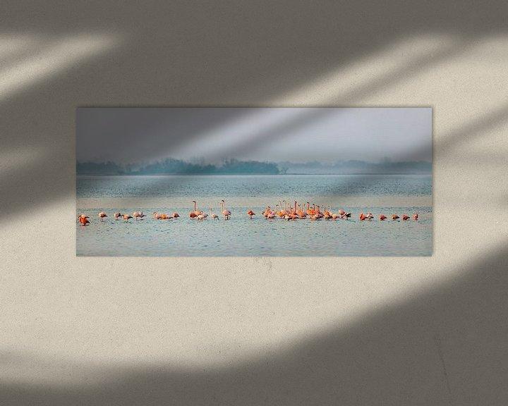 Beispiel: Flamingos im Grevelingen-See von Frans Lemmens