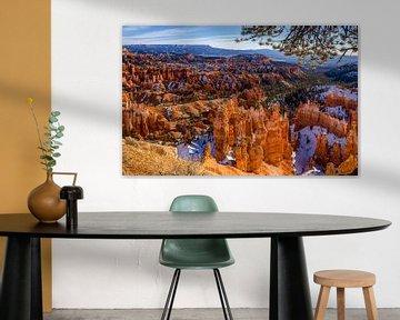 Bryce Canyon in winter [4] van Adelheid Smitt