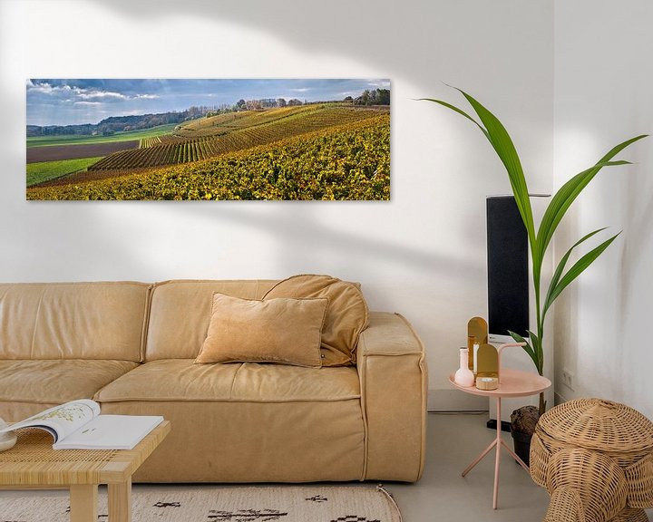 Beispiel: Weingut Der Apostelhof bei Maastricht von Frans Lemmens