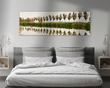 Bomenrij langs ringvaart van Beemster polder van Frans Lemmens