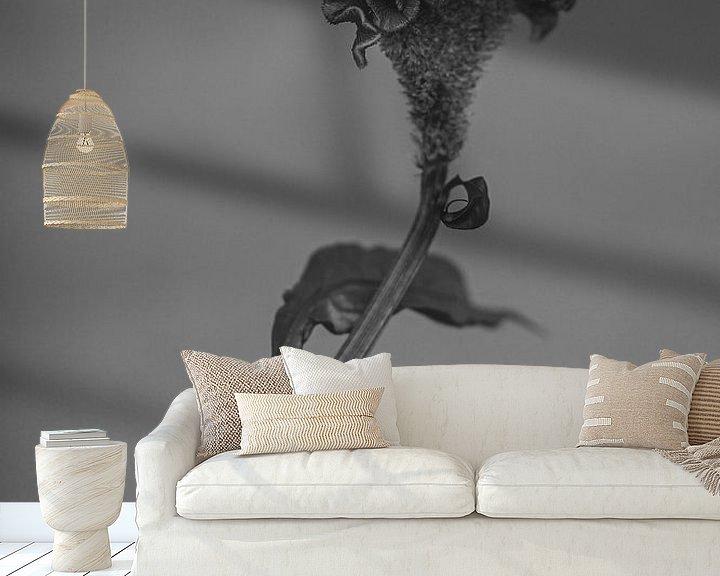 Impression: La célosie en noir et blanc sur Carla Van Iersel